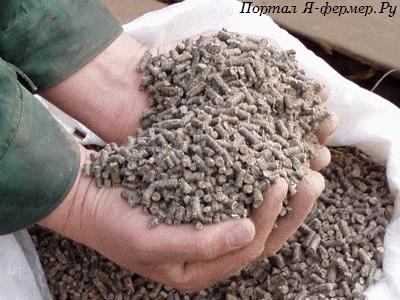 Питательная ценность кормов для сельскохозяйственной птицы