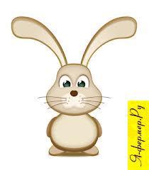 Что должно быть в аптечке кроликовода?
