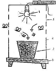 Самодельная ловушка для вредителей сада и огорода.