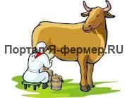 Для увеличения надоя молока