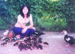 Мускусные утки и утята фото