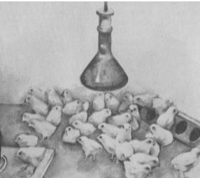 обогрев цыплят инфракрасной лампой