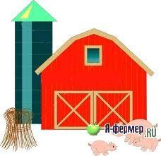 Рецепт силоса для свиней