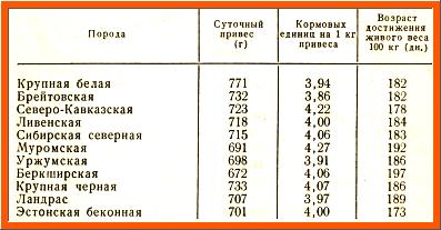 результаты контрольного откорма свиней, таблица