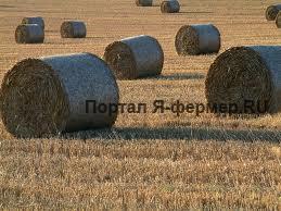 Заготовка сена, аренда копнителя, цена вопроса.