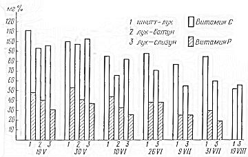 Содержание витамина С и P в листьях долголетних видов лука
