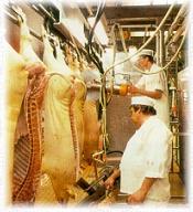 мясной цех в Дании
