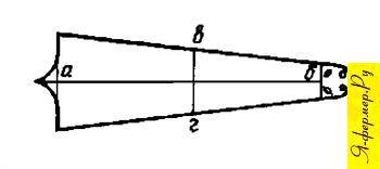Точки и линии измерения шкурок кролика. Шкурки кроликов, сорта кроличьих шкурок.