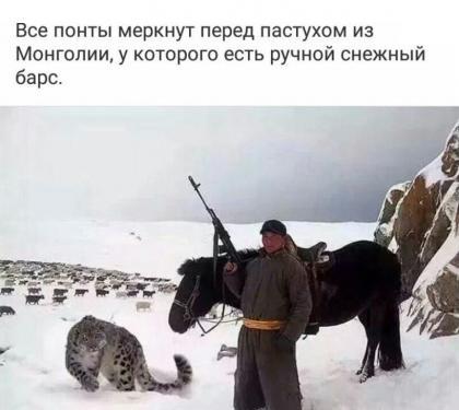 Пастух из Монголии с ручным снежным барсом, фото.