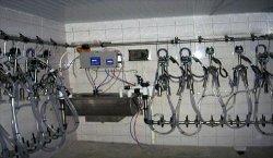 молокопровод и доение коров