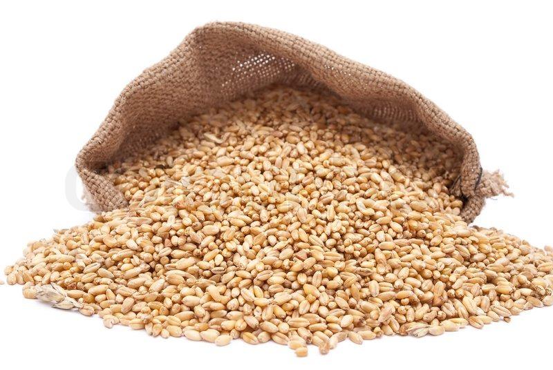 Зерно хранение.