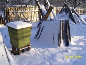 Чтобы пчёлы зимой не погибли