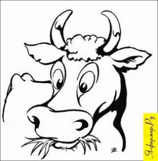 Коровник в ЛПХ