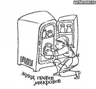 Холод против микробов.