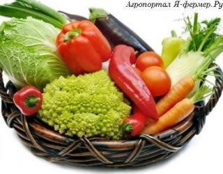 Как самому получить семена овощных культур