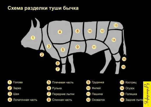 Схема разделки туши бычка.