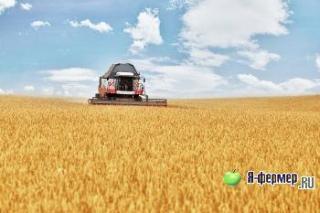 роторный комбайн TORUM. 4 серии зерноуборочных комбайнов компании Ростсельмаш