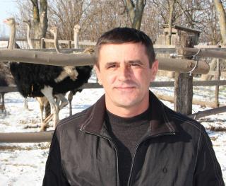 Владимир Михайлович Ивченко - владелец фермы, которая занимается  разведением страусов