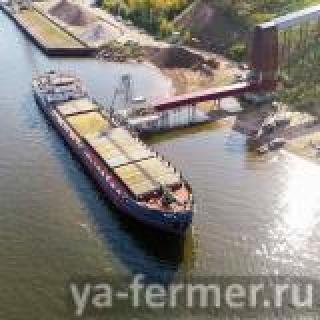 Через Волгу в Каспийское море: Татарстанский ячмень повезли на экспорт в Иран