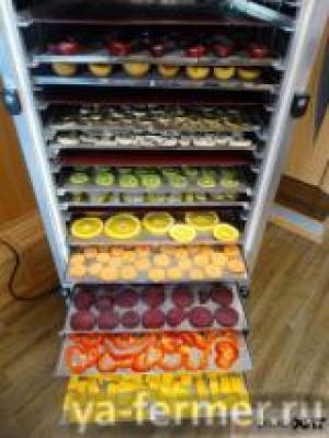 Инфракрасная сушилка (дегидратор) для сушки овощей, фруктов, лекарственного сырья, мясных и рыбных продуктов