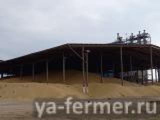 Хозяйство «Хузангаевское» Алькеевского района первым в районе завершило уборку зерновых и зернобобовых культур
