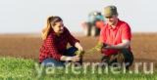 Россельхозбанк наращивает темпы кредитования посевной в Краснодарском крае
