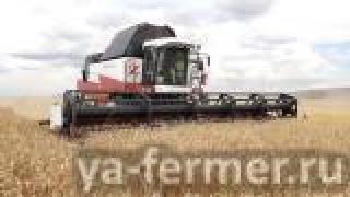 Агрофирма «Зай» первой в Заинском районе завершила уборку зерновых культур