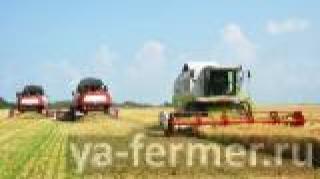 В Татарстане приступили к уборке зерновых и зернобобовых культур: убраны первые 30 тыс. га