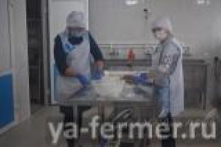В Аксубаевском районе при поддержке Минсельхозпрода РТ открылся кооператив по производству мясных изделий