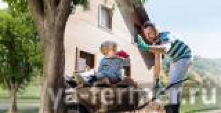РСХБ первым подписал соглашение с МСХ по выдаче льготных потребительских кредитов жителям села