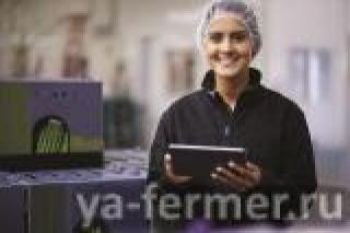 Компания TOMRA Food выпустила новую электронную книгу, адресованную компаниям — переработчикам овощей