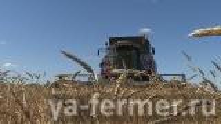 Аграрии Нурлатского района завершили уборку зерновых