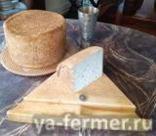 Козий сыр Queso Fresco