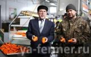 Сельхозкооператив из Татарстана объединил овощеводов республики
