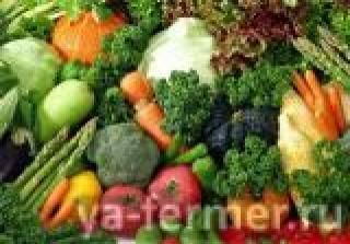 Проф.семена овощных культур для фермеров