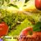 Создайте свой блог на Я-фермер.Ру!