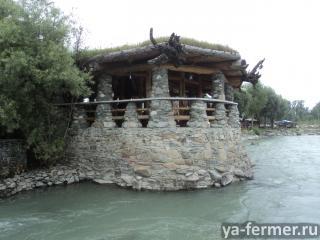 Ищу хороших соседей, желающих переехать на Алтай.