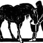 О чем часто забывают коневоды