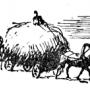 Кормление лошадей консервированными кормами