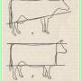 Выбор молочной коровы