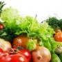 Выращивание различных овощей в теплицах
