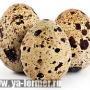 Яйца перепелов как лекарство