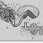 Масляные насосы в двигателях тракторов