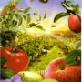 Общие сведения о возделывании культурных растений