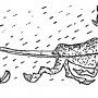 Праздник Севера – состязания оленеводов