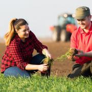 В первом квартале 2020 года Краснодарский филиал РСХБ профинансировал посевную на 7,3 млрд рублей