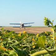 самолет для десикации подсолнечника