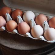 Яйца куриные отборные домашние диетические