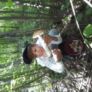 Дети ч восторге от местного леса)))
