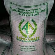высококачественные семена гибридов кукурузы F1 собственного производства